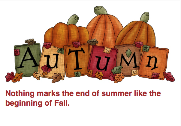 Autumn is here at OnlyMySkin.com!