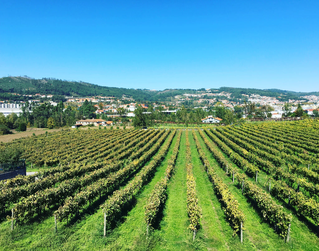 Wine Travel: Portugal and Vinho Verde