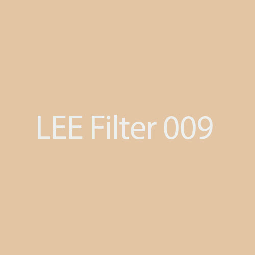 LEE Filters 009 Pale Amber Gold