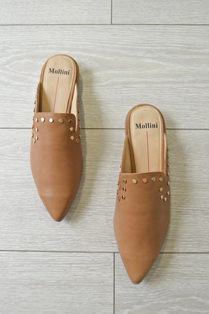 MOLLINI - ELYSE TAN LEATHER - Style on Point