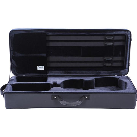 Blue oblong Viola Case