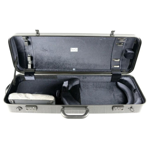 viola case with locks