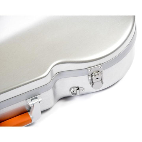 Image of professional viola case