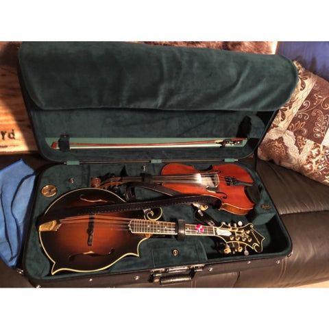 Image of violin mandolin case