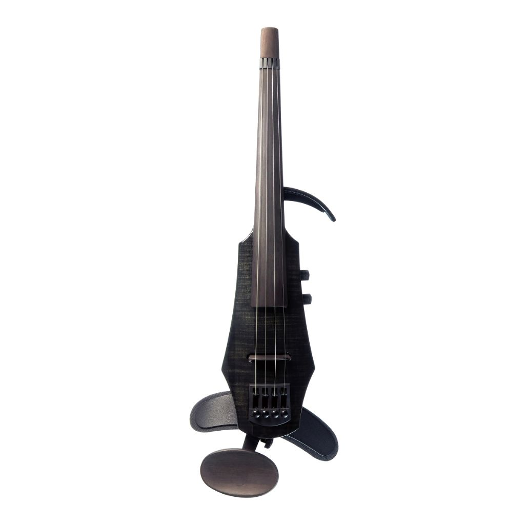black electric violin