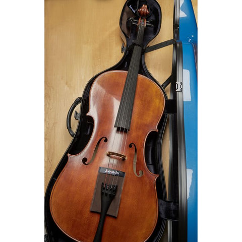 Image of cello case humidity control