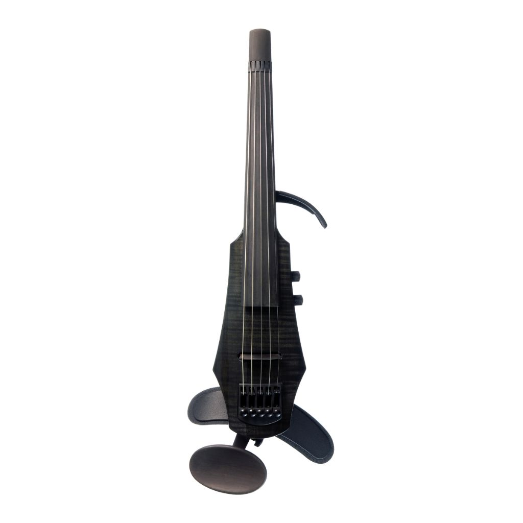Cool 5 string black electric violin