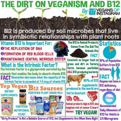 MORINGA  b12 (Cobalamin)  Concentration & Controversy Unveiled For Vegans And