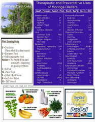 MORINGA TREE: A MEDICAL PHARMACOPOEIA