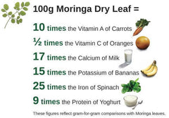 Moringa Tree: An Emerging Method for Treating Cancer