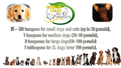 GoldenLeashPetProducts.com