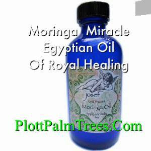 Moringa Oil - #1 Cold Pressed Royal Egyptian Miracle Moringa Oil
