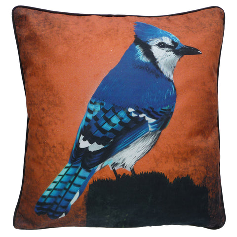 Blue Jay cushion with terracotta background. Organic cotton for your bed or couch. Ships from Canada, Designed and handdrawn decor. Luxury interior design.
