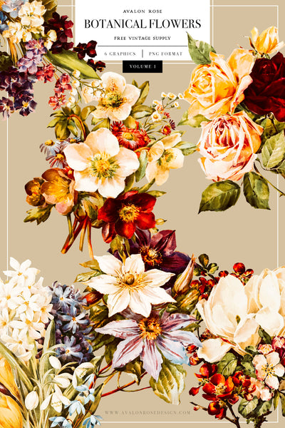 FREE Vintage Botanical Flower Graphics
