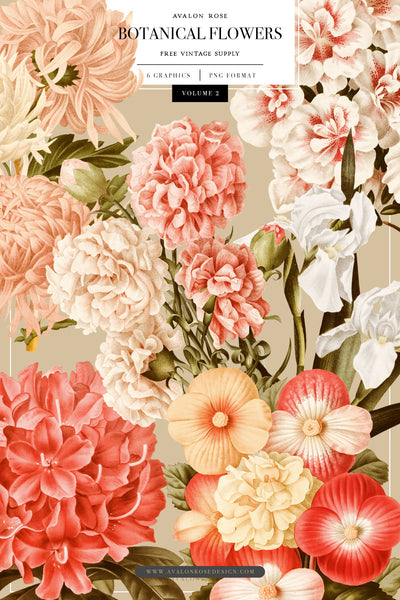 FREE Botanical Flower Graphics Vol. 2