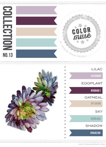 Color Muse: Collection No. 13