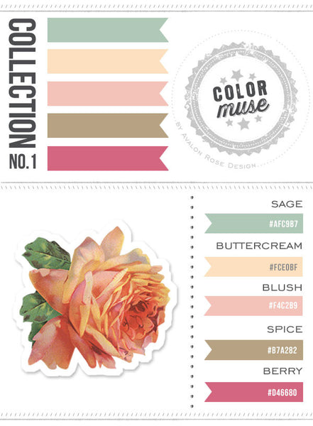 Color Muse: Collection No.1