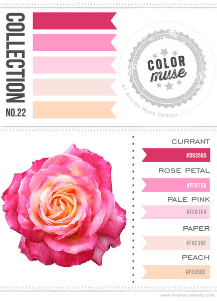 Color Muse: Collection No. 22