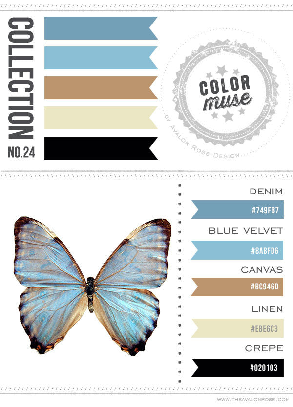Color Muse: Collection No. 24