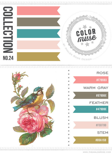 Color Muse: Collection No. 26