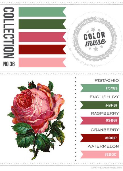 Color Muse: Collection No. 36