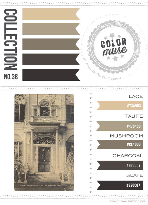Color Muse: Collection No. 38