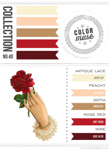 Color Muse: Collection No. 40