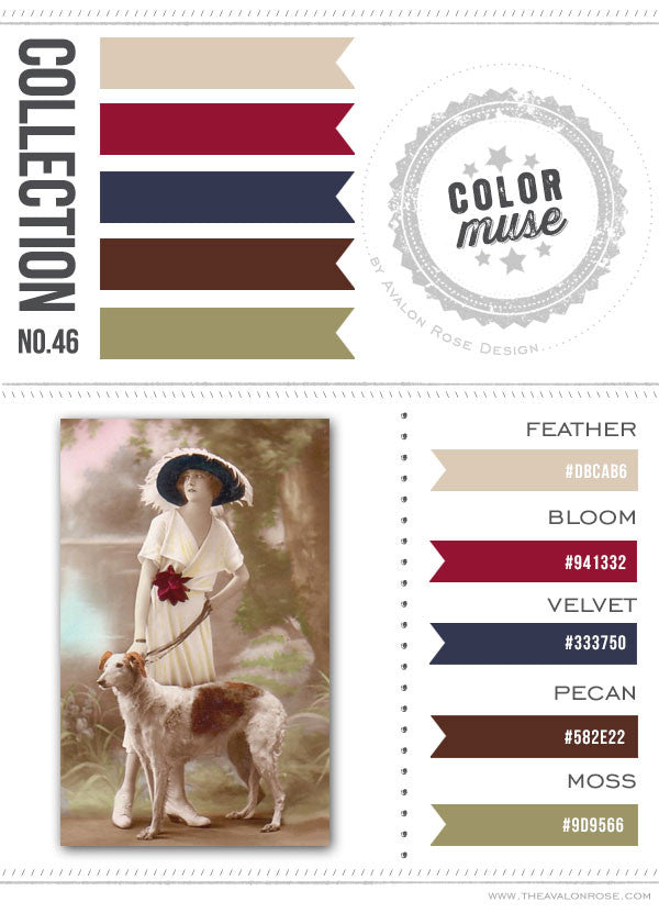 Color Muse: Collection No. 46