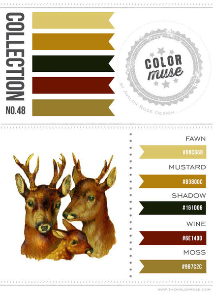 Color Muse: Collection No. 48