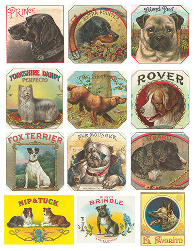 Free Vintage Dog Cigar Label Graphics