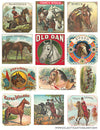 Free Vintage Horse Cigar Label Collage Sheet