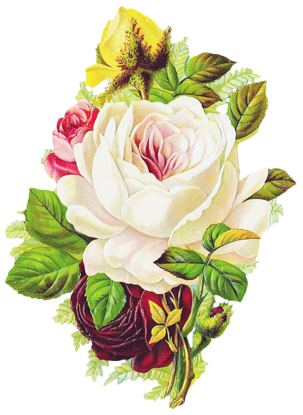 Free Graphic Friday - Rose Bouquet