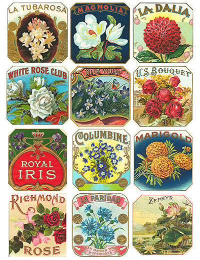 Free Vintage Floral Cigar Label Graphics