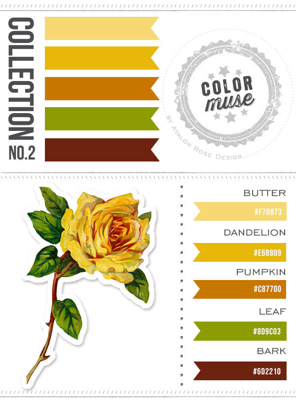 Color Muse Color Scheme Palette Yellow Green Brown