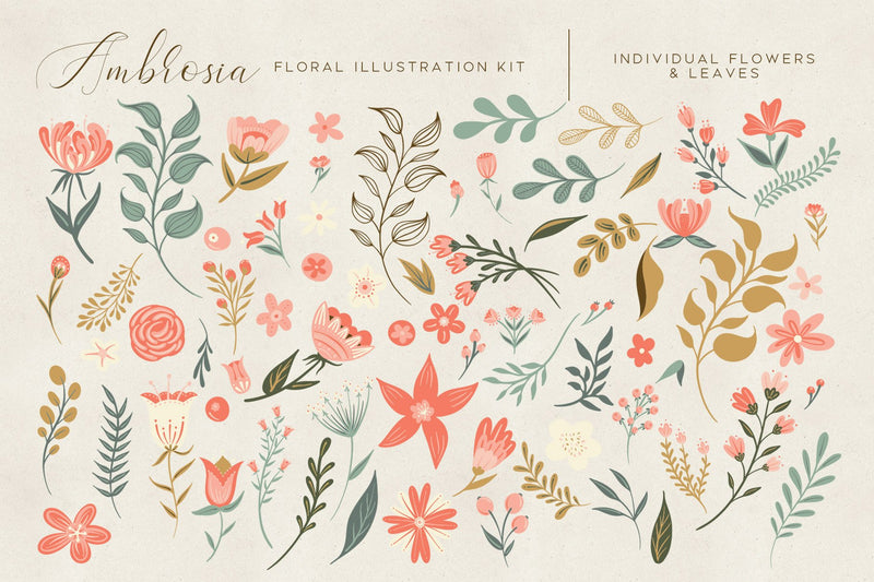 Ambrosia Floral Illustration Clip Art Kit