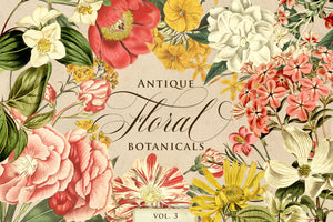 Antique Floral Botanical Graphics Vol. 3