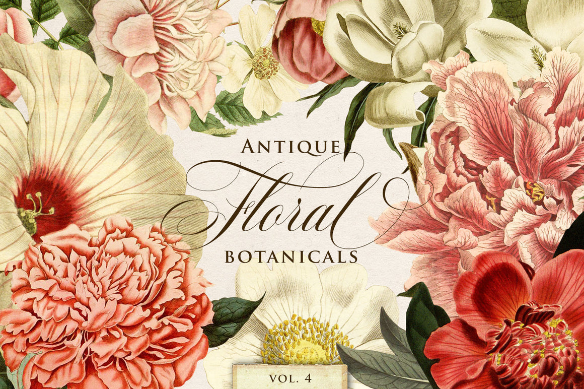Antique Floral Botanical Graphics Vol. 4