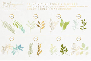 Botanique - Floral Watercolor & Illustration Kit