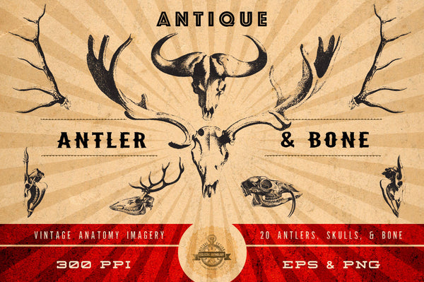 Antique Antler & Bone Vector Graphics