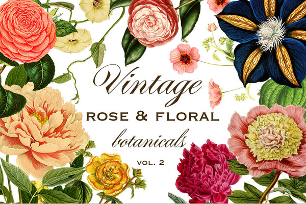 Vintage Rose & Floral Botanicals Graphics Vol. 2