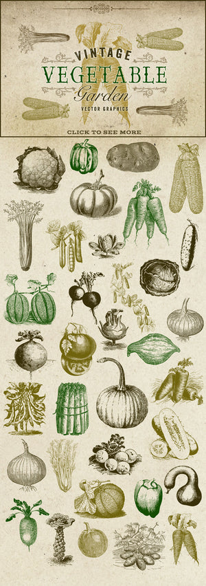 Vintage Vegetable Garden Graphics