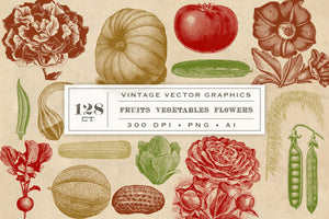 Vintage Fruit Vegetables and Flowers Vector Graphics