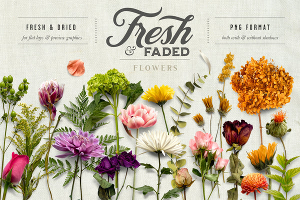 Fresh & Faded Floral Scene Creator Graphics