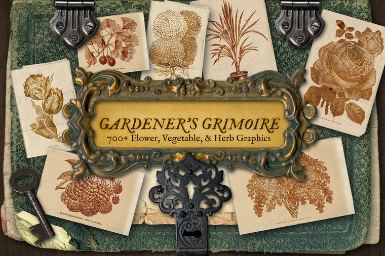 Gardener's Grimoire - Vintage Floral and Herb Graphics
