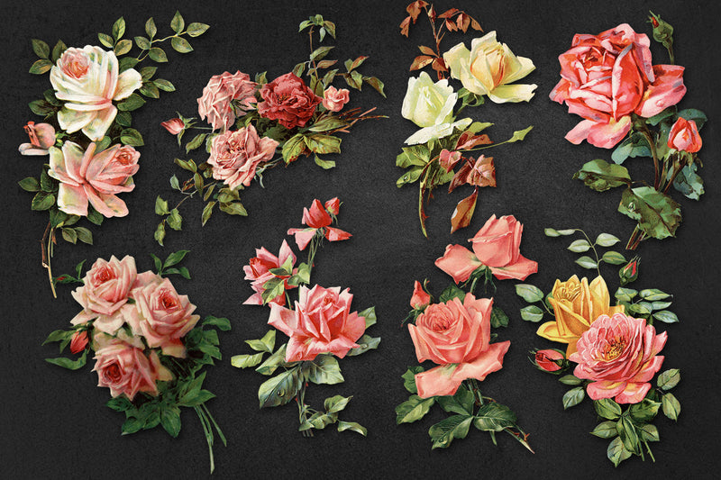 High Resolution Vintage Rose Graphics