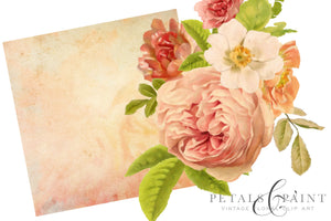 Petals and Paint Vintage Flower Graphic Clip Art
