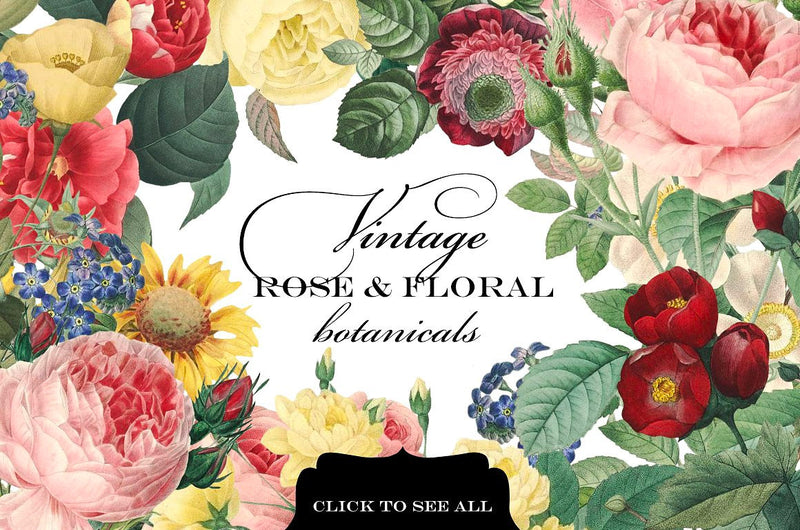 Vintage Rose & Floral Botanicals Graphics
