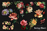 Large Vintage Flower Graphics No. 1