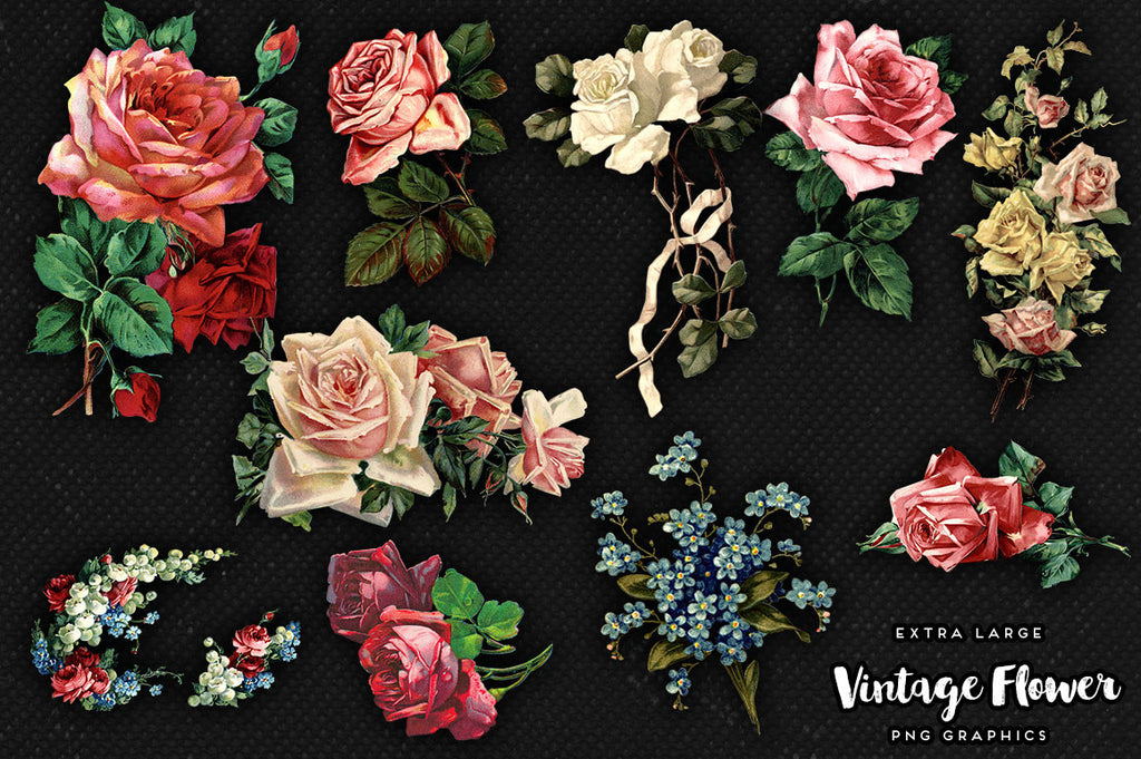 Large Vintage Flower Graphics No. 2