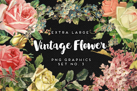 Large Vintage Flower Graphics No. 3